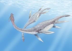Plesiosaurus dolichodeirus by Dmitry Bogdanov