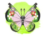 Fancy patterned Vivillon